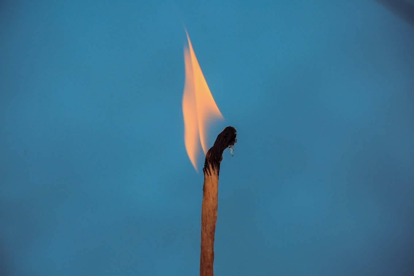 2019-Leadership-Remedies-for-Employee-Burnout-blog-image