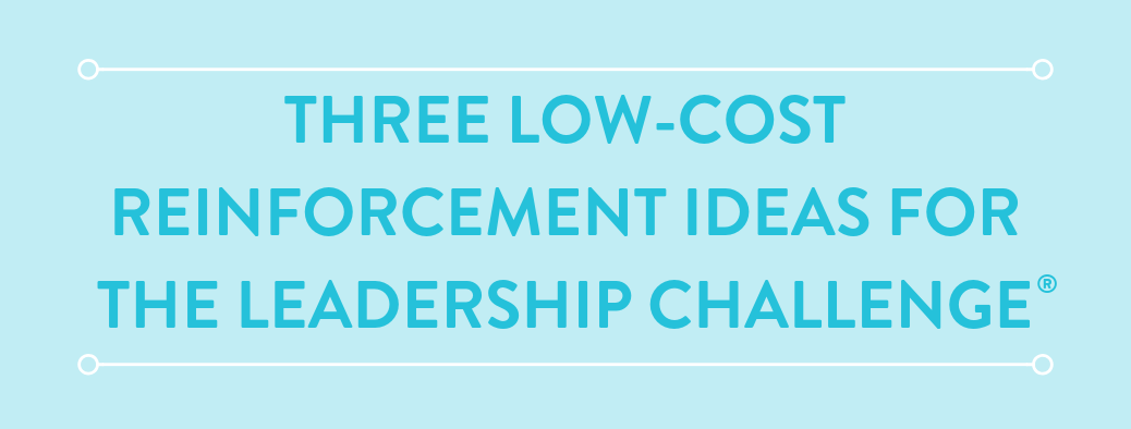 The Leadership Challenge Reinforcement: Low-Cost Resources